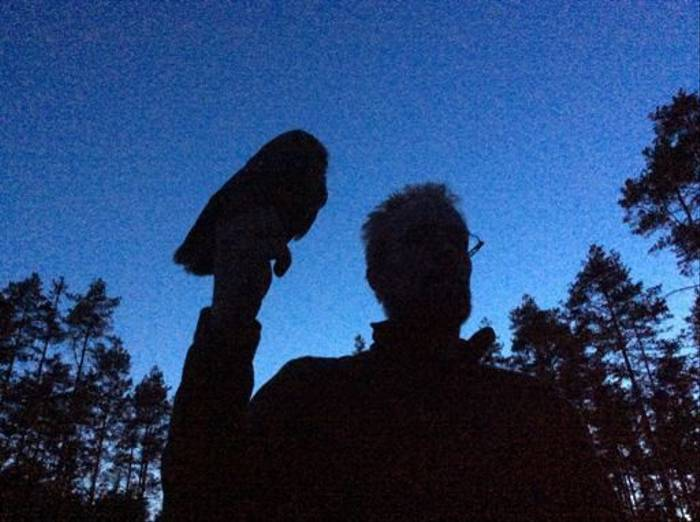 Tengmalm's Owl in the hand of Gunnar (Daniel Green)