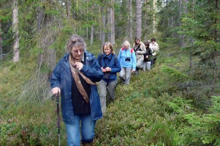 Naturetrek group walking through the forest