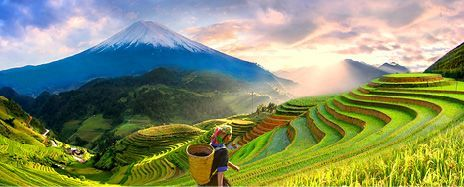 From the Hidden Cu Chi Tunnels to Majestic Mount Fuji: Highlights of Vietnam & Japan