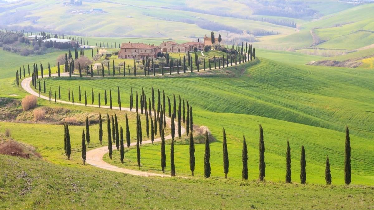 Italy - Tuscany - San Quirico  - AdobeStock_113883354.jpeg