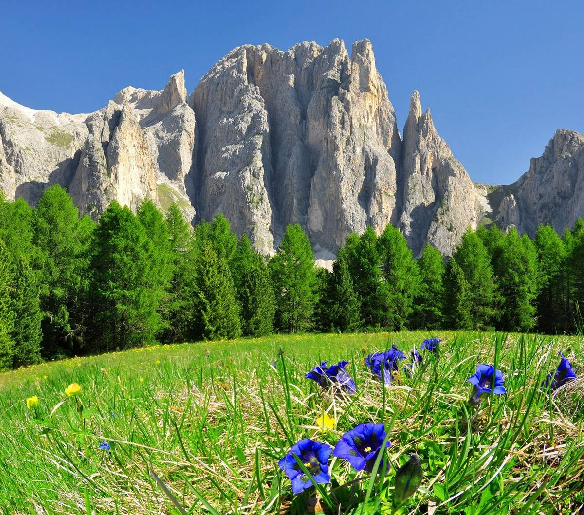 The Dolomites - Selva -  High Routes -& Hutting - AdobeStock_44329550.jpeg