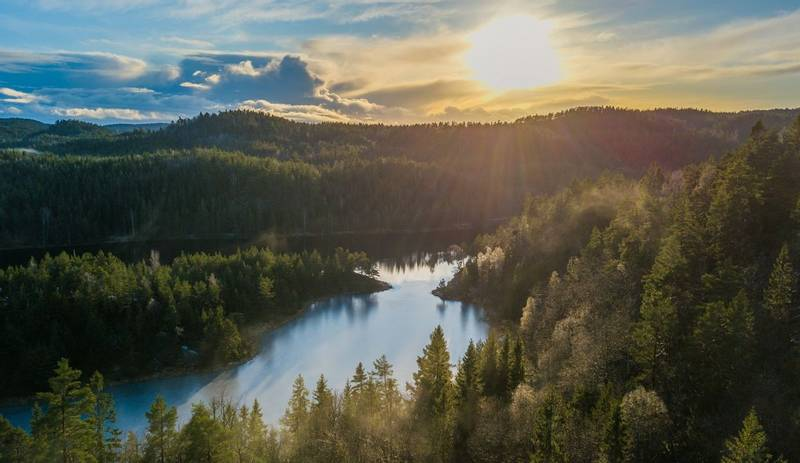 Nature picture taken with drone