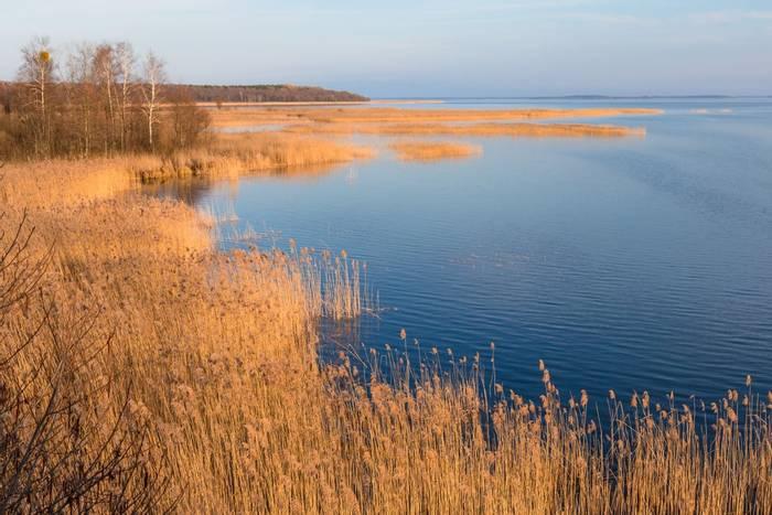 Luknajno Lake Reserve Poland shutterstock_1677199408.jpg