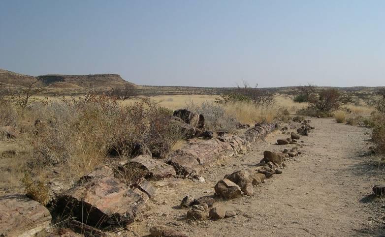 Namibia 2008 084.jpg