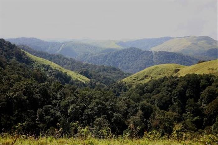 South India scenery (Raghu Kulkarni)