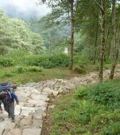 Trail above Ghanpokhara (2,158m)