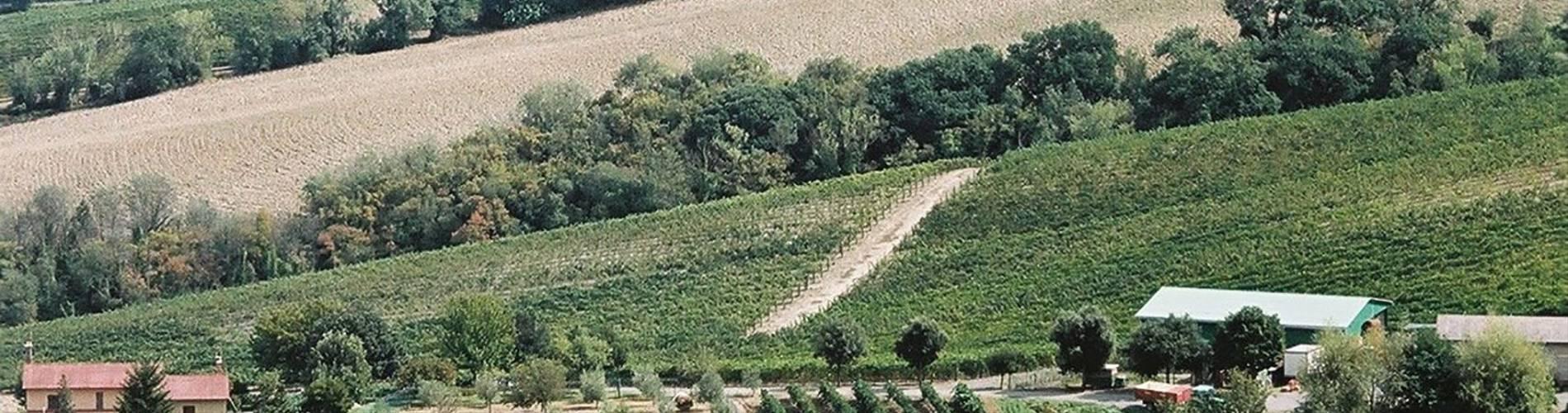 Locanda Palazzone, Umbria, Italy (7).JPG