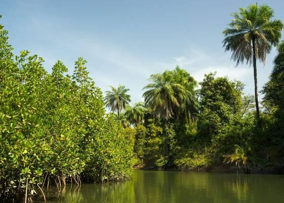 River Gambia shutterstock_797076793.jpg