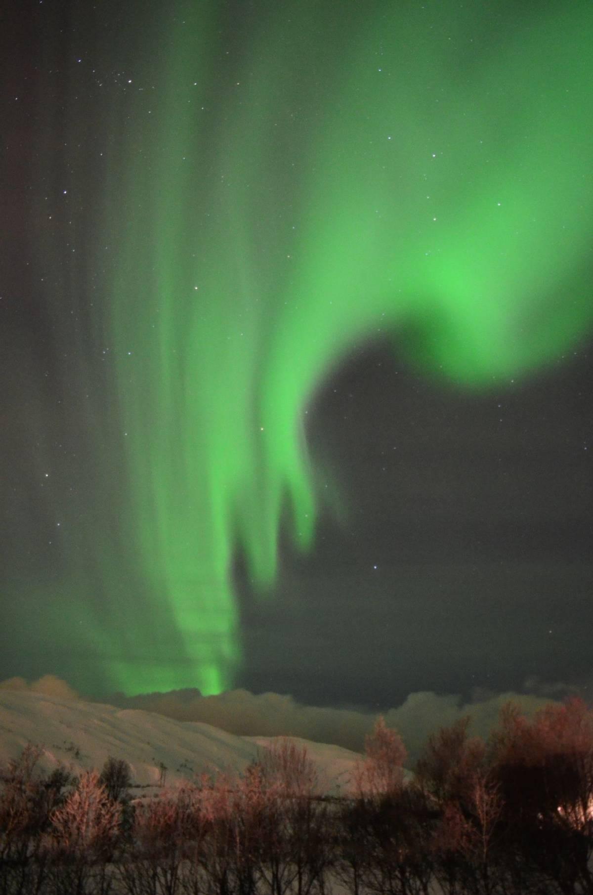Northern Lights (David Phillips)