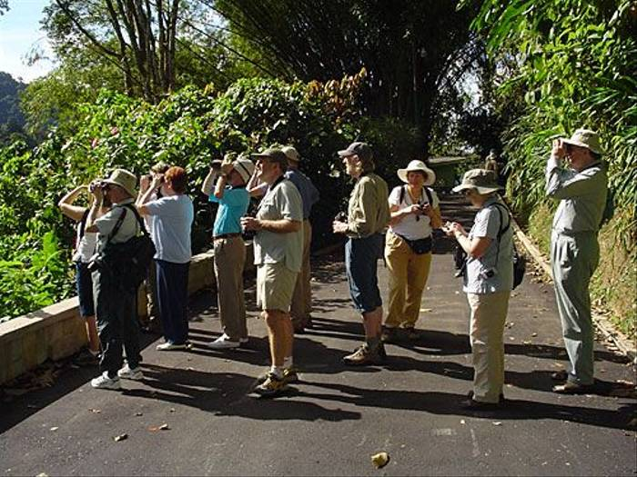 Naturetrek group birding (Peter Dunn)