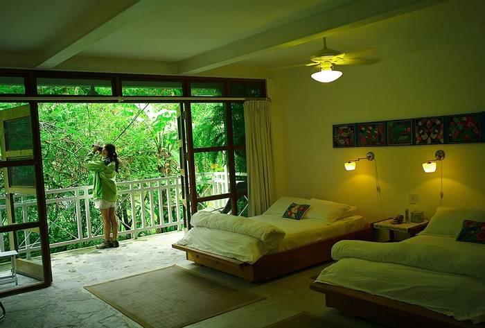 Canopy Lodge Room