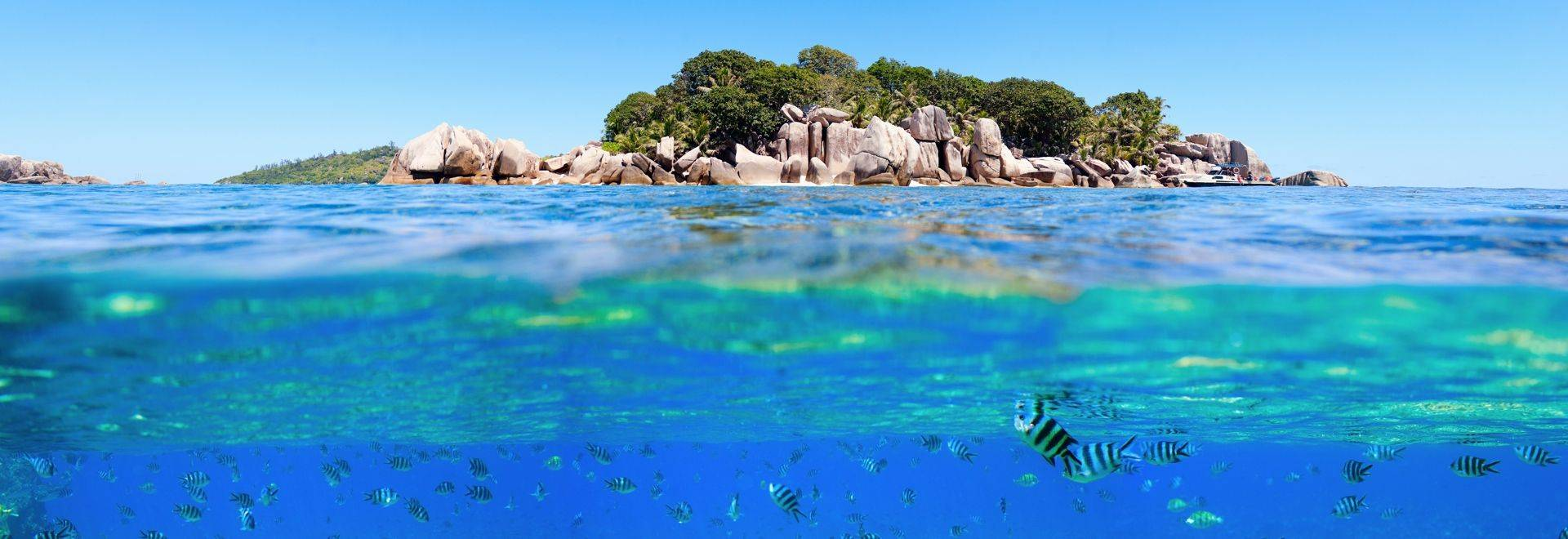 Under   Above Sea Water In Seychelles