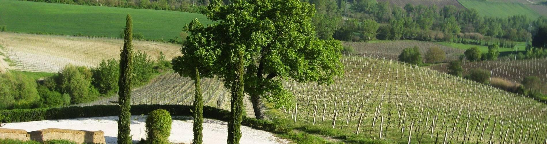 Locanda Palazzone, Umbria, Italy, Junior Suite (7).JPG