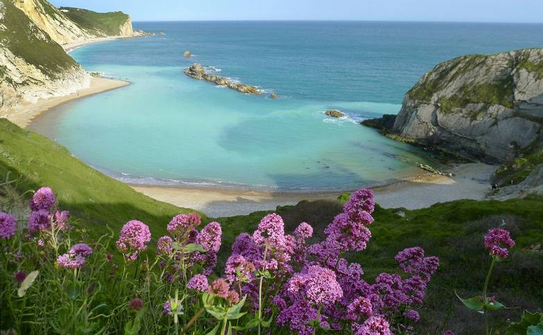 Man of War Bay near Durdle Door, Dorset, England UK The Jurassic coast a UNESCO World Heritage site