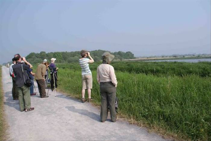 Naturetrek group looking for Great White Egret (Ed Drewitt)