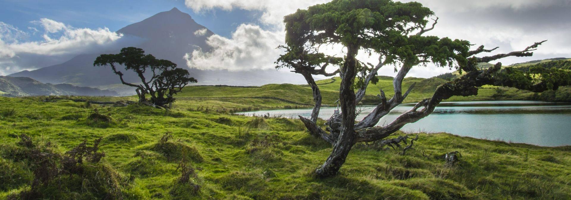 Pico Island, The Azores. Credit: Futurismo Azores Adventure
