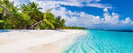 2021 Atlantic Ocean Adventure: South America, The Bahamas & Bermuda Discovery