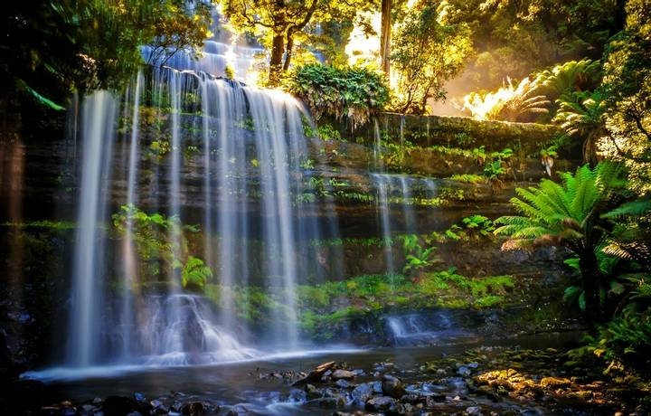 Russel Falls in Mt Field National Park with an evening light and nice waterfall.