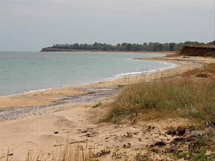 Black Sea (David Morris)