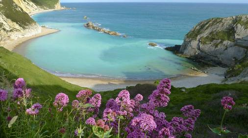 4-Night Dorset Coast Discovery Tour