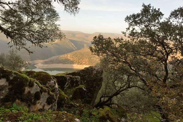 Monfrague National Park, Extremadura, Spain shutterstock_355329581.jpg