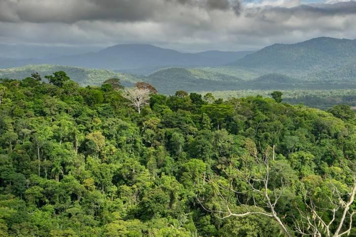 Surama Mountain, Guyana shutterstock_356240192.jpg
