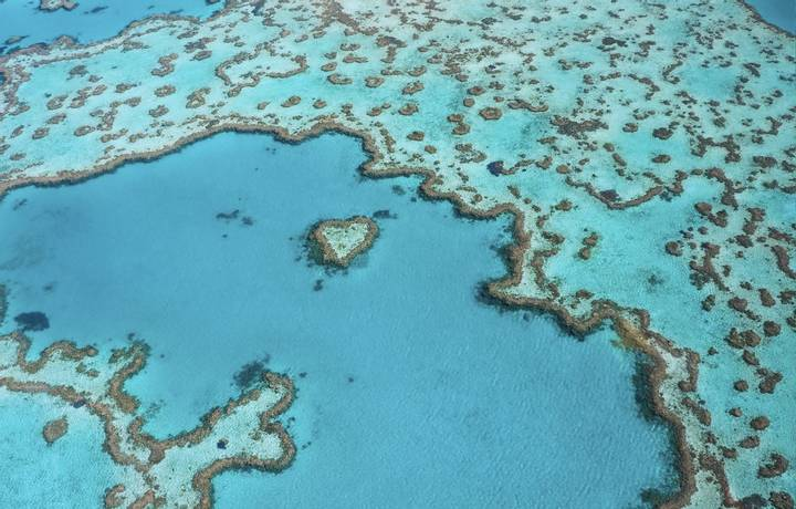 Heart Reef arial shot taken near Whitsunday islands, Queensland. Coral formation in the shape of a heart located  at the gre…