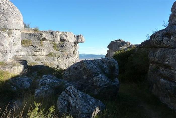Las Tuerces Geological Reserve (Byron Palacios)