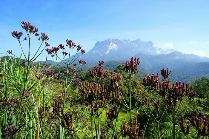 Mount Kinabalu Borneo Shutterstock 398303710
