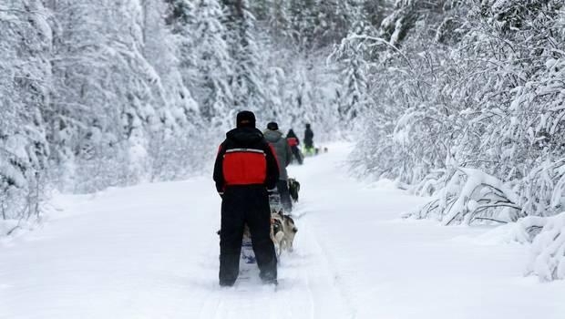 Vuokatti - Half-Term Winter Adventure