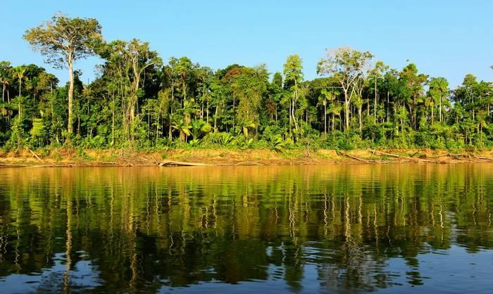 Manu River