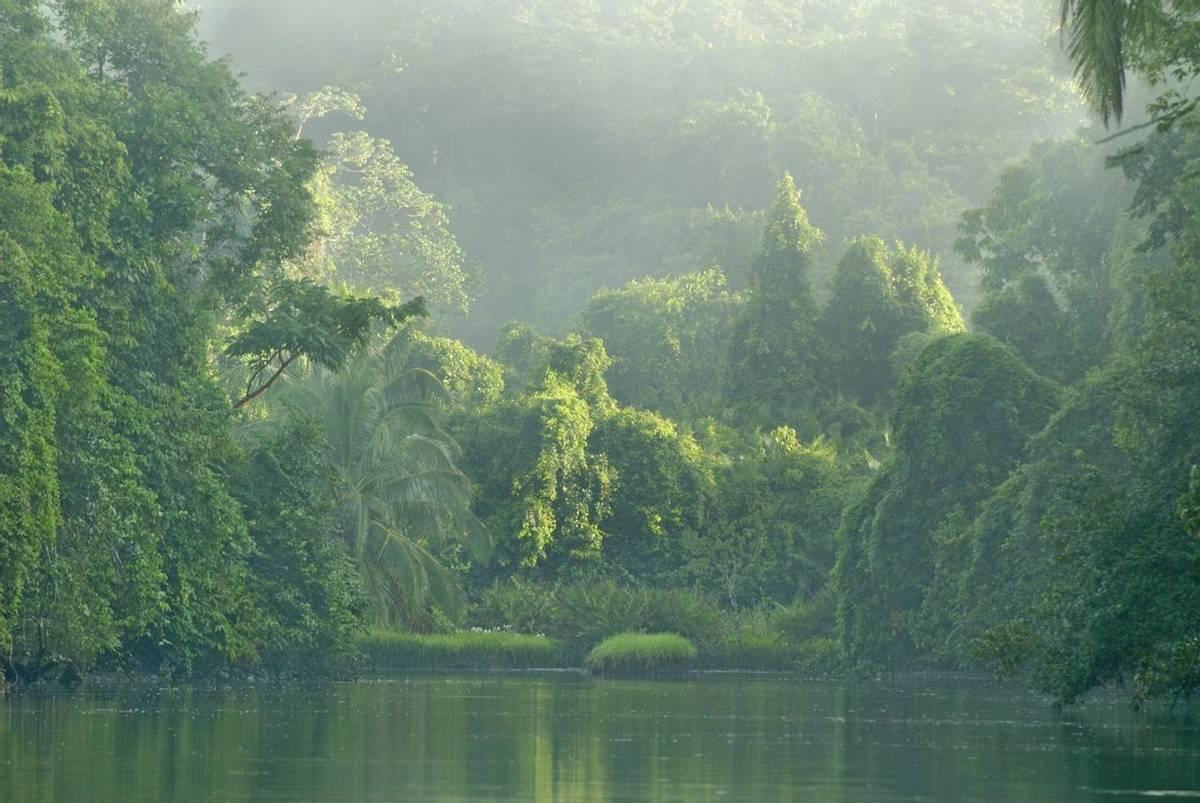 Rio Sirena River in Corcovado National Park