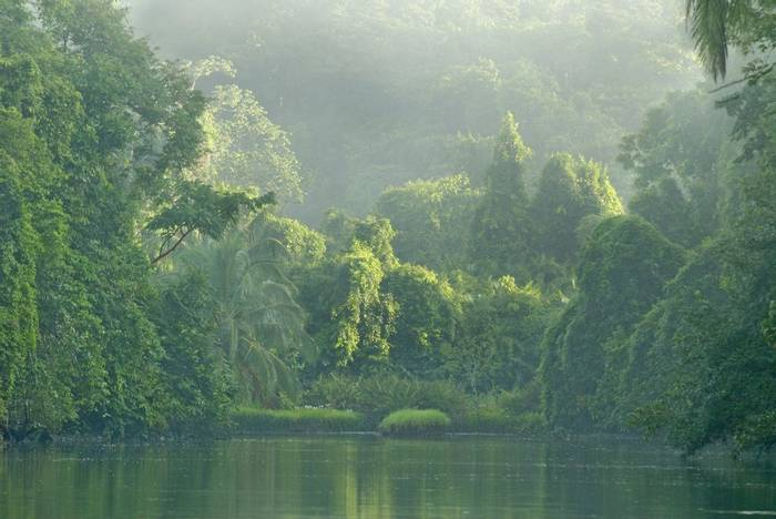 Rio Sirena River in Corcovado National Park