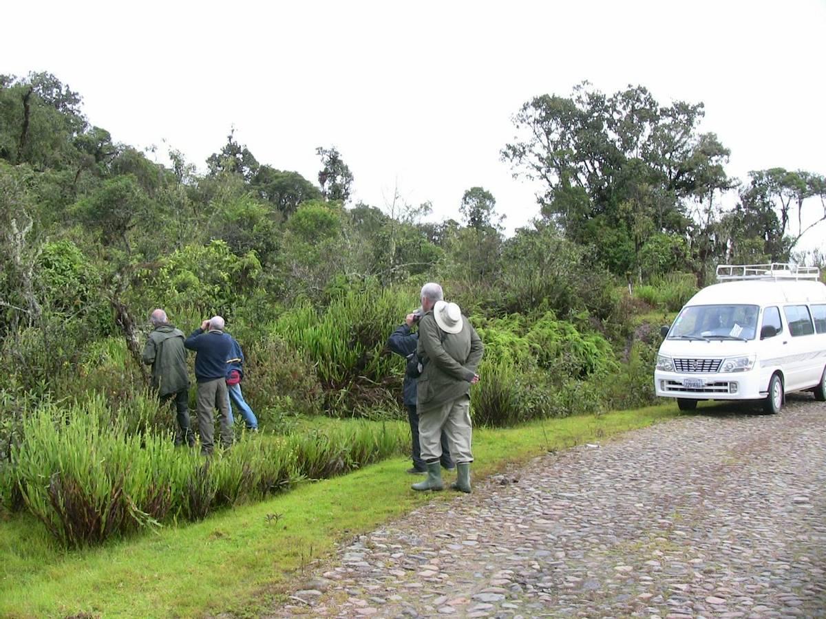 Naturetrek group birding (Mike & Maryilyn Burge)