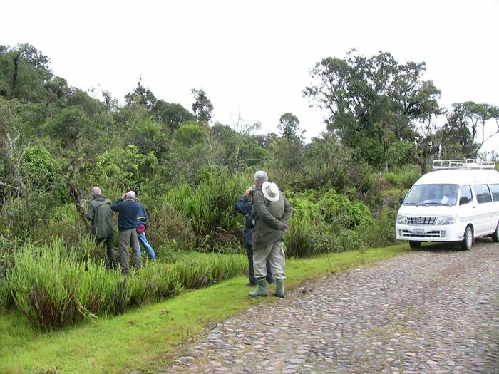 Naturetrek group birding (Mike & Maryilyn Burge)