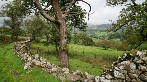 4-Night Southern Snowdonia Tread Lightly Guided Walking Holiday