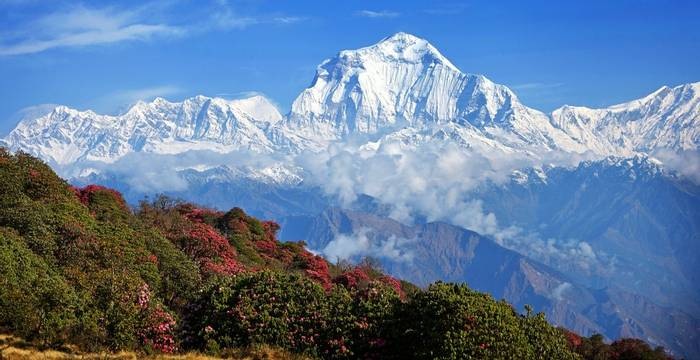 Nepal (Annapurna Range)