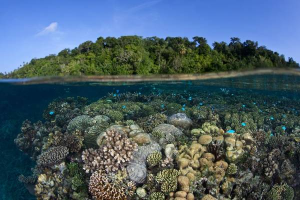 Marovo Lagoon, Solomon Islands Shutterstock 148852022