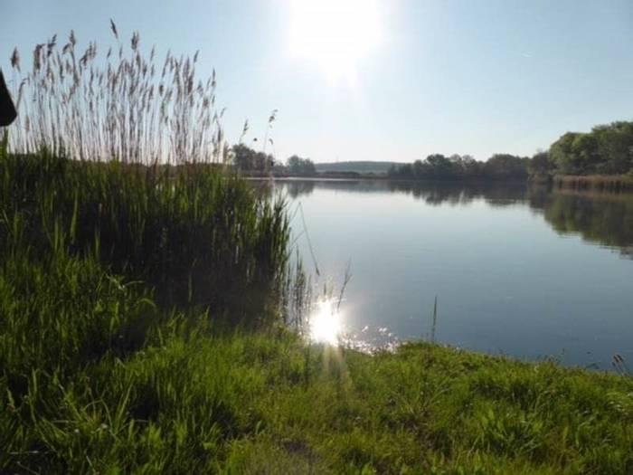 Lake (Mark Elliot)