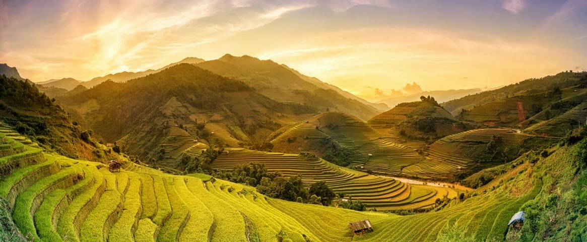 Rice fields on terraced in sunset at Mu chang chai, Yen bai, Vietnam
