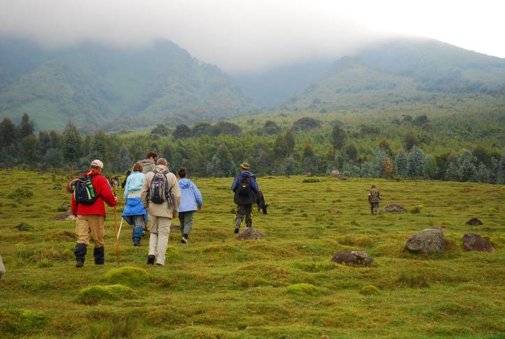 Trekking to see the mountain gorillas in Uganda