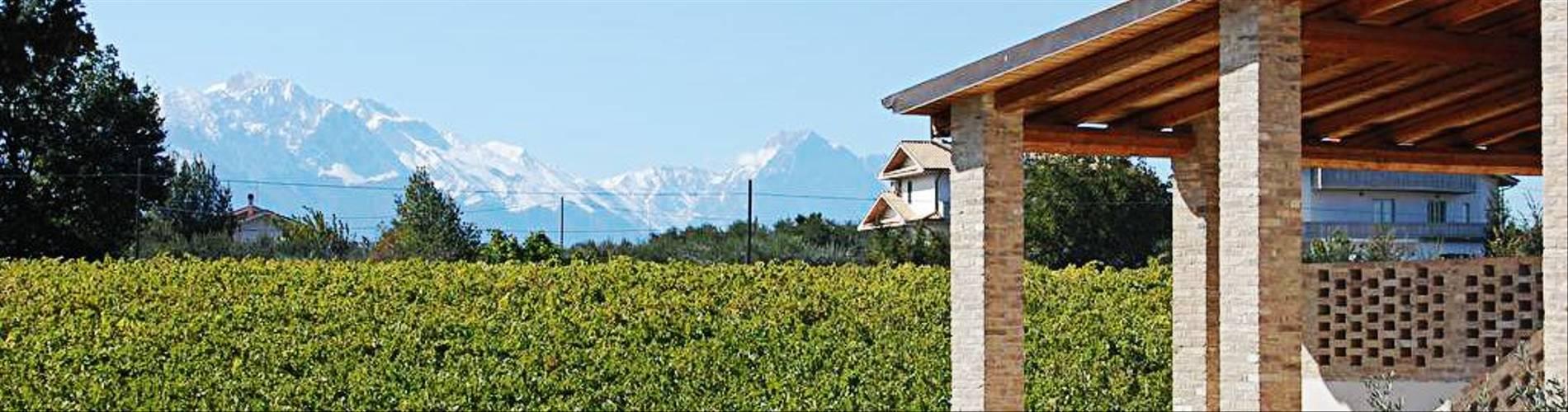 Il Grappolo, Abruzzo, Italy (5).jpg