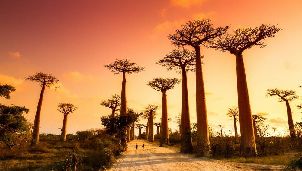 Madagascar guided walking holiday