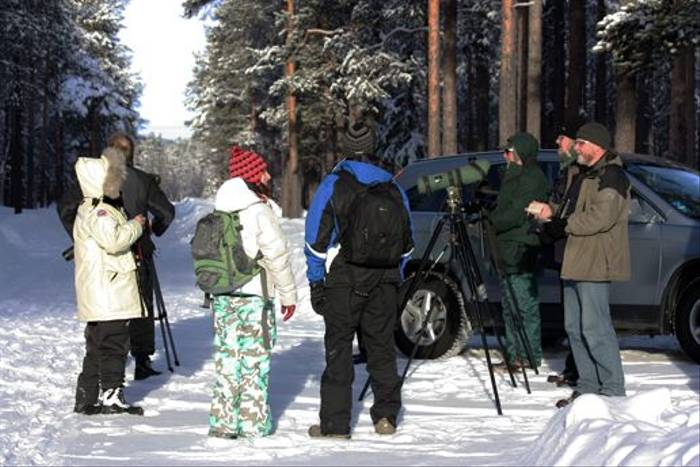 Naturetrek Group at Ivalo looking for woodpeckers (Jennifer Horn)