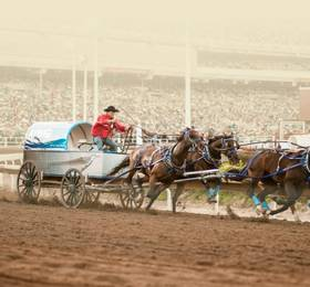 Calgary - Hotel Stay and Calgary Stampede