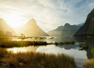 New Zealand's Natural History