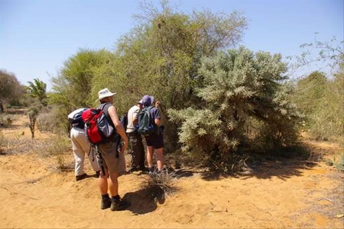 Naturetrek clients studying thorns