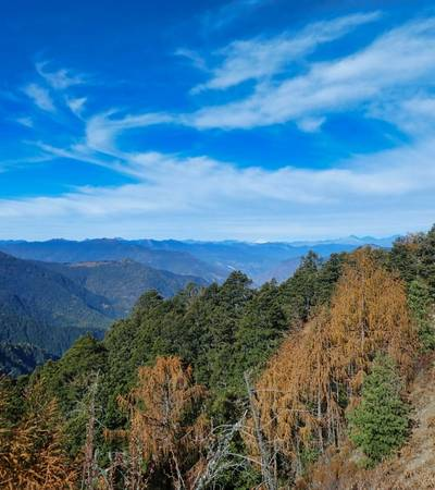View from the first day of Dagana trek