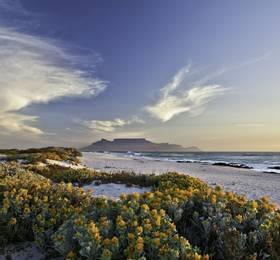 Cape Town (Overnight in Port)