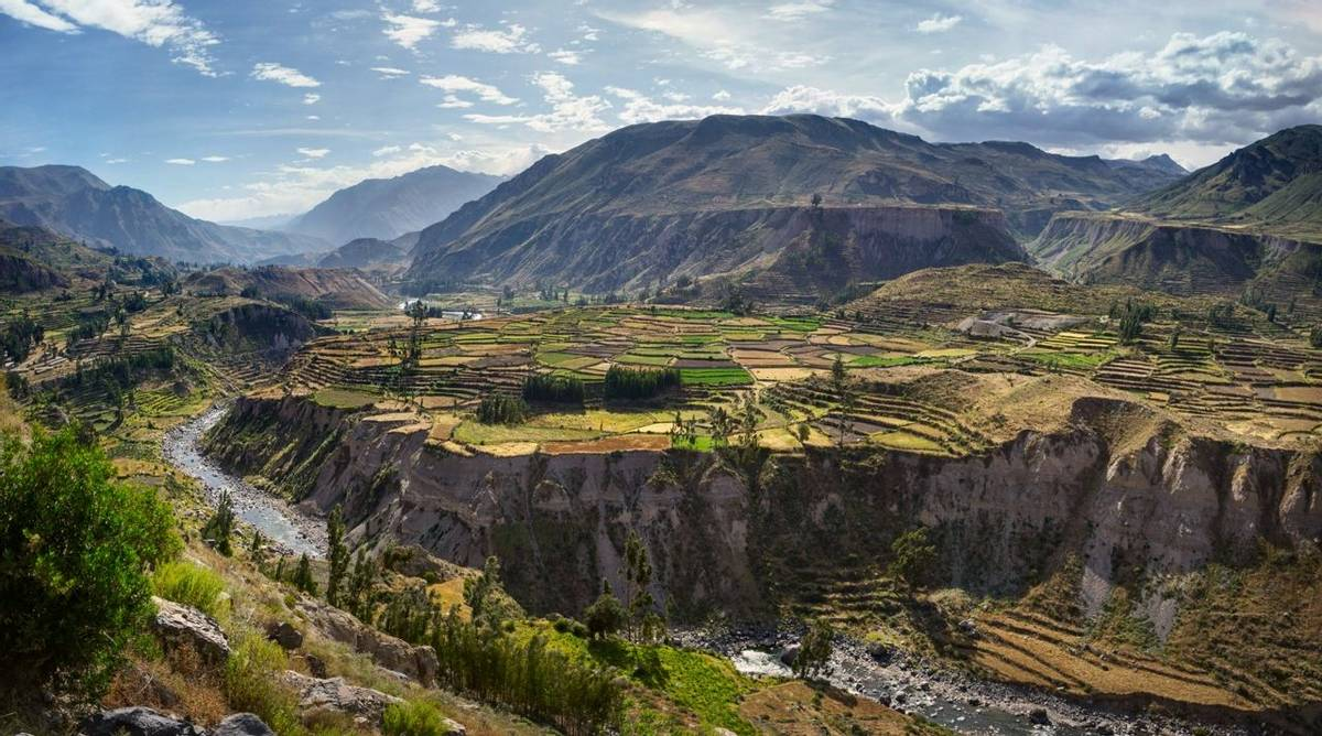 Peru - Colca Canyon - AdobeStock_195384448.jpeg